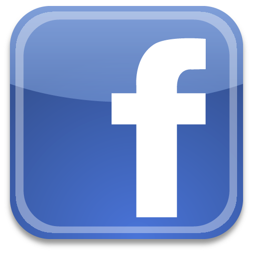 Delfinsub on Facebook
